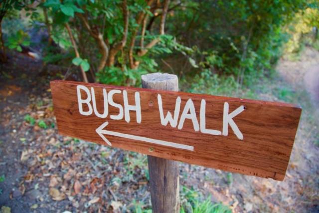 Lotri Bay, Lake Kariba, Zambia - Bush Walk