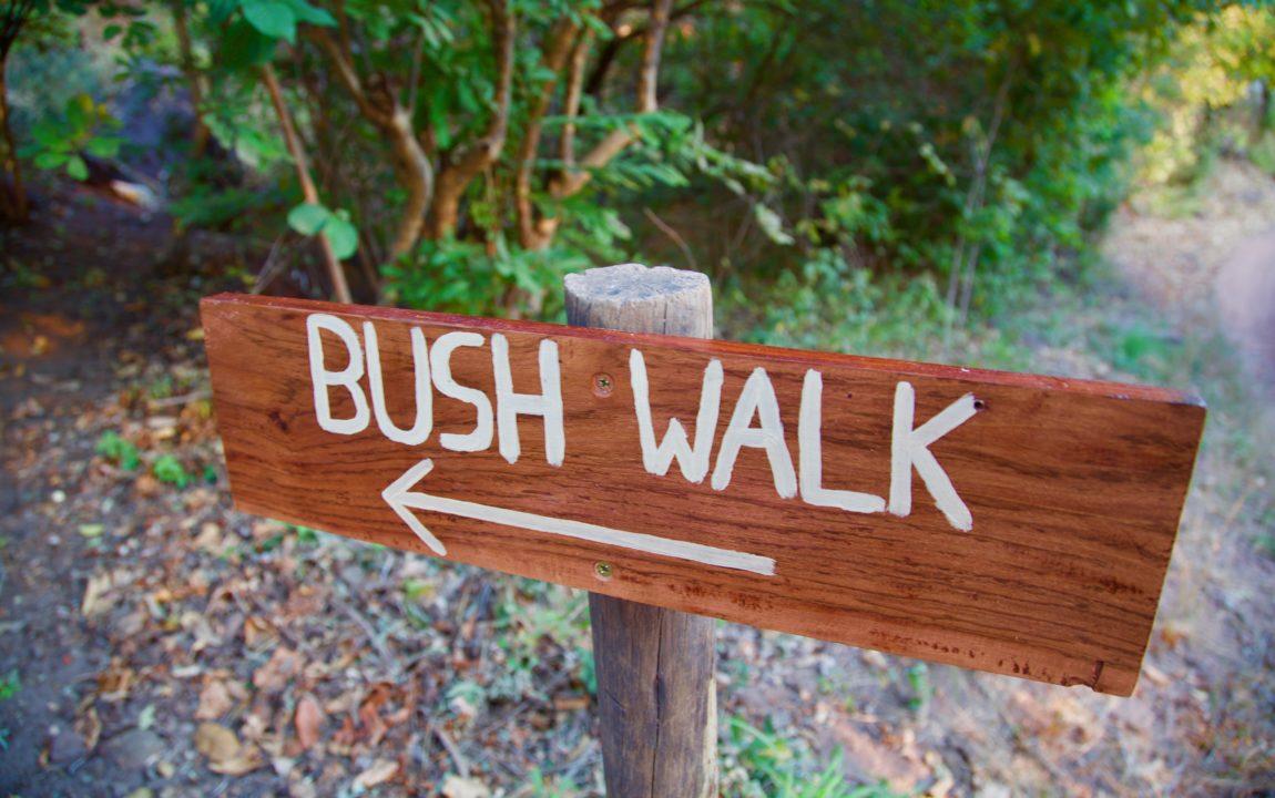 Lotri Bay - Bushwalk