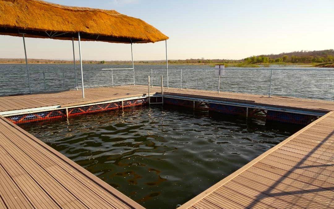 Lotri Bay, Lake Kariba, Zambia - Lake Pool